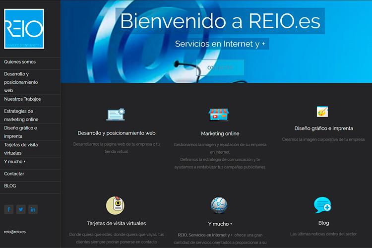 Pantallazo de la página web de REIO