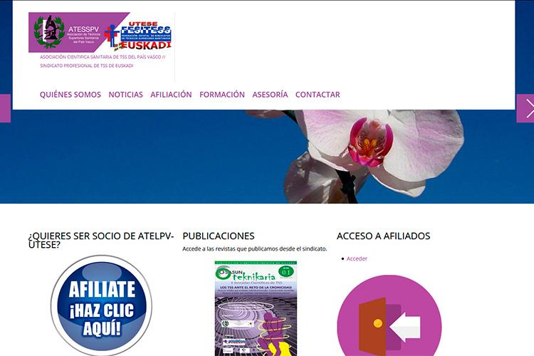 Página web de ATESSPV